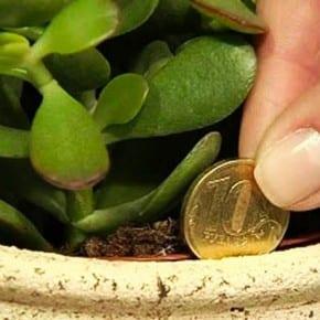 Вы хотите привлечь деньги в ваш дом? Вот простой трюк!
