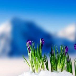 Нумерологический прогноз для рожденных 1-го марта