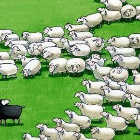 Что происходит, когда вы восстаете против воли толпы
