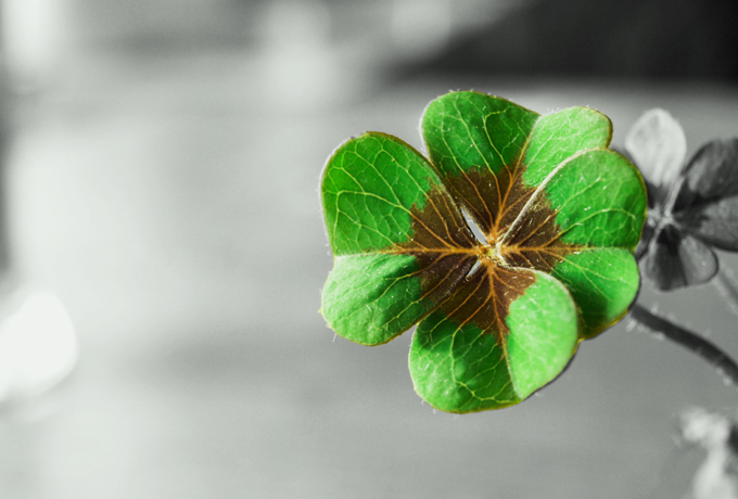 Что нужно сделать, чтобы всегда во всём везло?