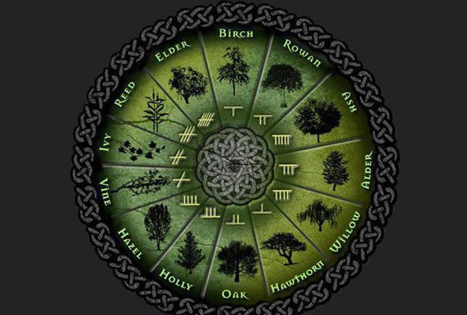 Кельтская астрология: знаки Зодиака и их значение
