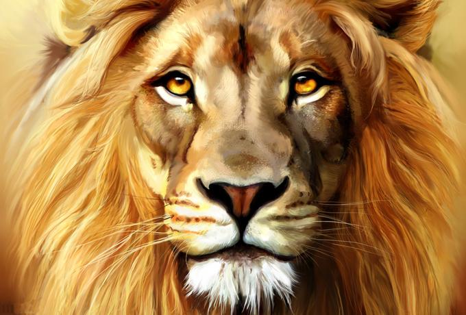 5 забавных фактов о Львах