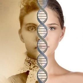 Воспоминания могут передаваться по наследству, и ученые выяснили, как именно